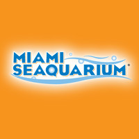 Miami Seaquarium Pink's Hot Dog